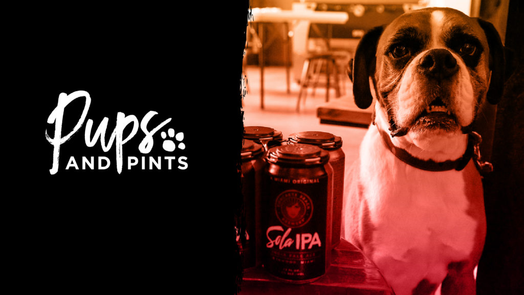 Pups and Pints at Concrete Beach