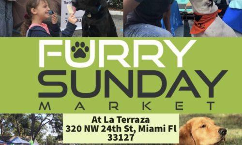 Furry Sunday